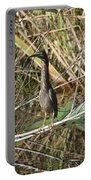 Young Green Heron  Portable Battery Charger