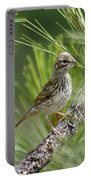 Young Lark Sparrow 2 Portable Battery Charger
