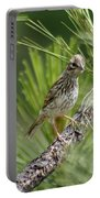 Young Lark Sparrow 3 Portable Battery Charger