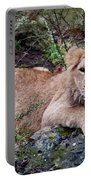 Young Lion  Portable Battery Charger