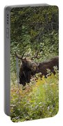 Young Male Moose Portable Battery Charger