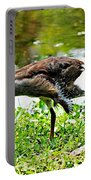 Young Moorhen Portable Battery Charger
