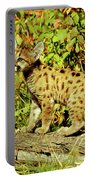 Young Mountain Lion Portable Battery Charger