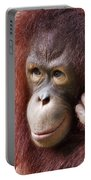 Young Orang Utan Looking Thoughtful Portable Battery Charger