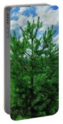Young Pine Portable Battery Charger