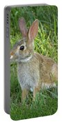 Young Rabbit Portable Battery Charger