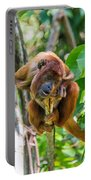 Young Red Howler Monkey Portable Battery Charger