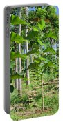 Young Teak Plantation Portable Battery Charger