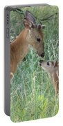 Young White-tailed Deer Say Hello Portable Battery Charger