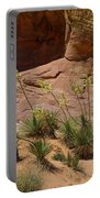 Yucca Plants Valley Of Fire Portable Battery Charger