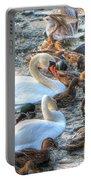 Yury Bashkin Ducks Stockholm  Portable Battery Charger
