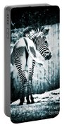 Zebra Blues  Portable Battery Charger