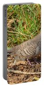 Zebra Dove Portable Battery Charger