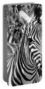 zebra Family Portable Battery Charger