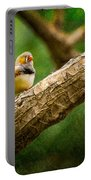 Zebra Finch Male Portable Battery Charger