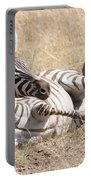 Zebra Foal Rolls In Dust On Savannah Portable Battery Charger