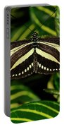 Zebra Longwing Butterfly On A Sanchezia Nobilis Tropical Plant Portable Battery Charger