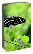 Zebra Longwing Butterfly Portable Battery Charger