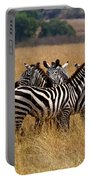 Zebra Protect Each Other Portable Battery Charger