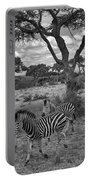 Zebra Running Through Savannah Portable Battery Charger