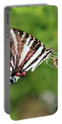 Zebra Swallowtail Butterfly In Garden 2016 Portable Battery Charger