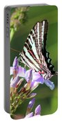 Zebra Swallowtail Butterfly On Phlox Portable Battery Charger
