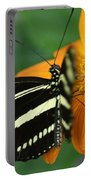 Zebra Wing Profile...   # Portable Battery Charger