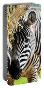 Zebra Zee Portable Battery Charger