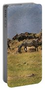 Zebras In The Ngorongoro Crater, Tanzania Portable Battery Charger by Aidan Moran