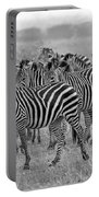 Zebras On The March Portable Battery Charger