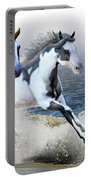 Ziggy's And Annie's Beach Run Portable Battery Charger