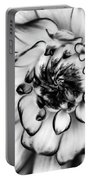 Zinnia Close Up In Black And White Portable Battery Charger