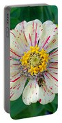 Zinnia Guest Portable Battery Charger