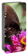 Zinnia Visitor 4 Portable Battery Charger