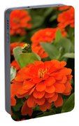 Zinnia Zap Portable Battery Charger