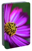 Zinnia's Rock Portable Battery Charger