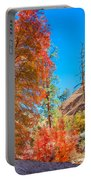 Zion Autumn Colors Portable Battery Charger