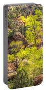 Zion National Park Small Tributary Of The Virgin River Portable Battery Charger