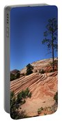 Zion Park Colors And Texture Portable Battery Charger