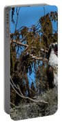 Zombie Osprey Crying For Brains Portable Battery Charger