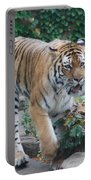Chicago Zoo Tiger Portable Battery Charger
