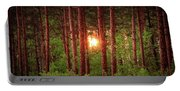 010 - Pine Sunset Portable Battery Charger