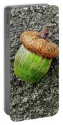 Acorn Portable Battery Charger
