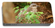 Bush Stone-curlew Portable Battery Charger