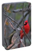 Cardinal On Watch 2 Portable Battery Charger