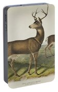 Columbian Black Tailed Deer Portable Battery Charger