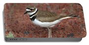 Killdeer Portable Battery Charger