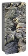 Lava Peeking At Us Portable Battery Charger by Jim Thompson