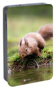Red Squirrel Sciurus Vulgaris Portable Battery Charger