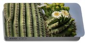Saguaro Blooms To The Sky  Portable Battery Charger
